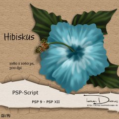 hd-psp_script_hibiscus_prev01.jpg