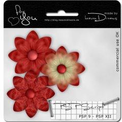 hd_flower_script.jpg